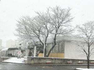 雪の一日♪